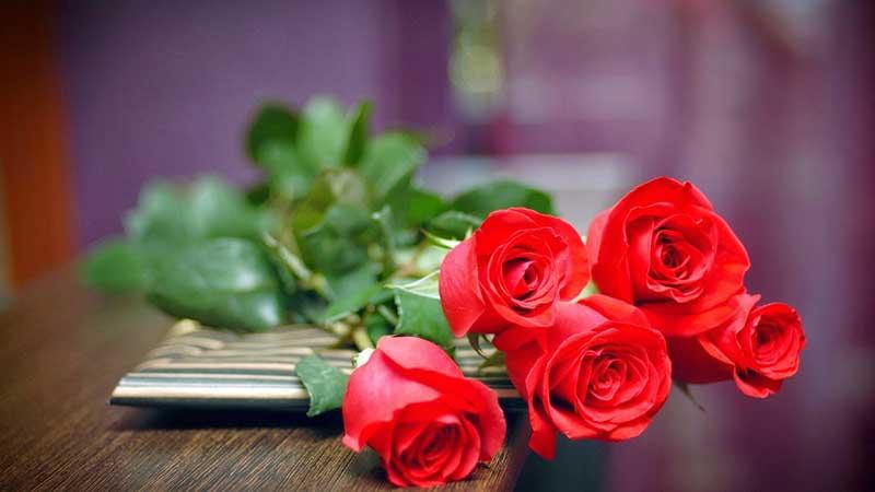 Quà 8/3 cho người yêu – tặng quà ý nghĩa – gửi gắm yêu thương