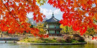 7 sự thật thú vị tại đất nước Hàn Quốc