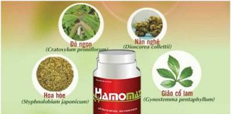 Thuốc giảm mỡ máu Hamomax